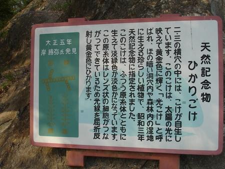090412Yoshimi 005.jpg