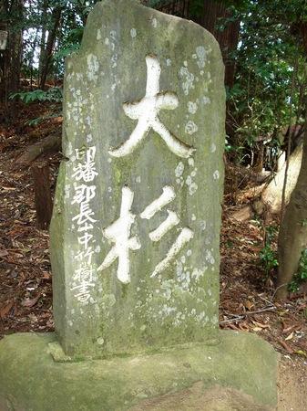 090418Makatajinja_Narita 005.jpg